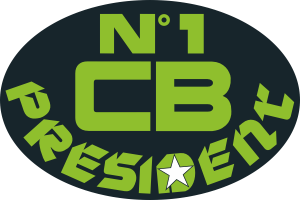 logo n1cb